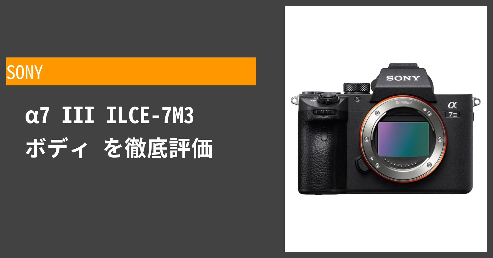 SONY α7 III ILCE-7M3を徹底評価